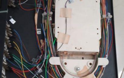 Tikus Penyusup Kantor Merusak Kabel Elektronik FEB Unila.